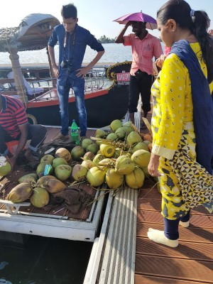 Coconuts on the pier.