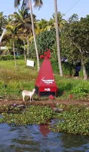 Houseboat goat