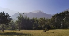 The western ghats as seen from the yard.